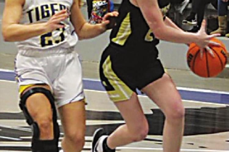 ABBY HIGGINBOTTOM takes the ball into the paint for a shot against Stringtown in the Tigers' recent District win.